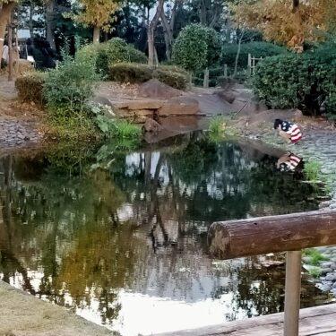 高田馬場の撮影スポット