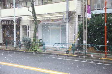雪を写真に撮る
